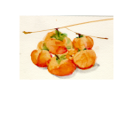 Persimmons 13<br />