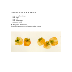 Persimmons 16<br />