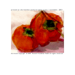 Persimmons 41